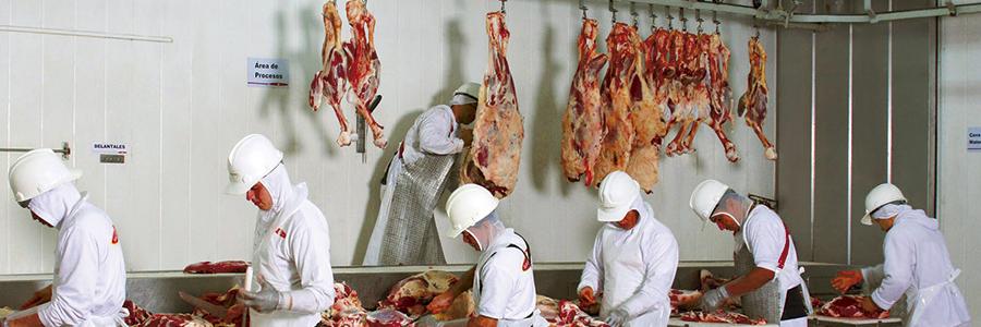 Día del Trabajador de la Carne   RESEFOP
