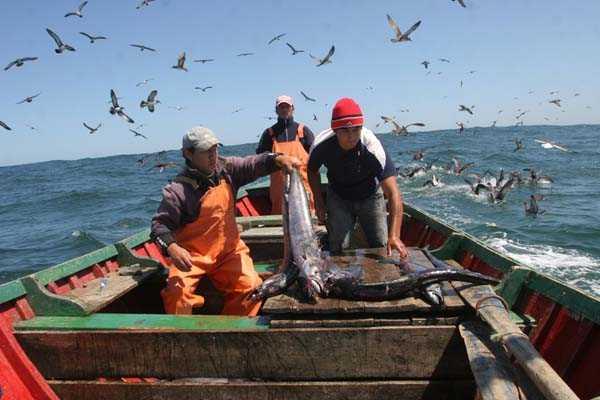 26 de enero Día del pescador 2 - imagenesactual com