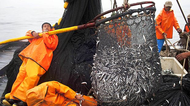 Día del Trabajador de la Pesca Industrial   RESEFOP